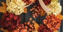 Trick or Treat / All the Fall and Halloween inspiration you'll need to get your house ready for changing leaves and candy corn!