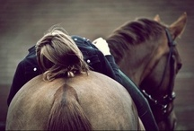 Riding LOVE / My passion.  I will be on a horse until the day I die. / by Erin Kate Gouveia