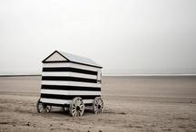 Stripe / by Erin Kate Gouveia