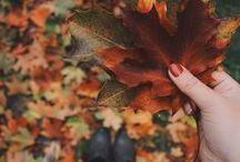 Herbst-Gedanken / Herbst ist die Zeit, in der man zurück zur Natur findet, in den Wald geht, Blätter und Nüsse sammelt. Die kalte Luft tief einatmet, den Regen wegkuschelt und an manchen Tagen die warmen Sonnenstrahlen auf der Haut spürt. Für diese Zeit findest Du hier Outfit-Ideen, herbstliche Rezepte, Dekoration aus der Natur, Fotografie, Sprüche und vieles mehr!