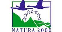 • Sites Natura 2000 // Maine et Loire + • / La Nature doit être protégée. Nous soutenons particuliètement toutes les initiatives en ce sens et tout particulièrement les projets de protection de sites naturels. Plusieurs projets Natura 2000 existent dans le Maine et Loire et alentours
