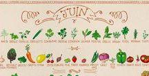 Fruits & légumes ETE / Parce qu'il est important de respecter la saisonnalité des produits, vous trouverez ici des recettes à base de fruits et légumes d'été :)