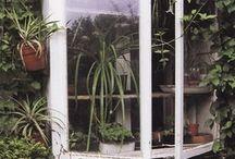 {garden} / Ideas for the future garden
