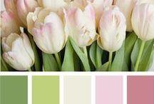 paleta de cores / by Fernanda Pacheco