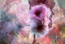 Fabulous Flowers ~ Artistic