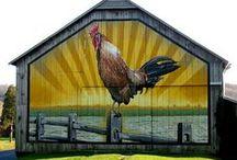 Farm Girl / by Jane Spivey