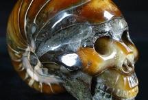 Serious Skulls / by Paula McCleery