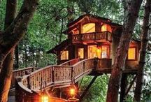 Tree Houses / Maybe we should consider a headquarters relocation. LendingTree Headquarters in a tree house - now that's a story!  / by LendingTree