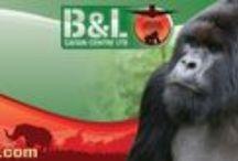 B&L Brochure
