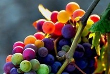 Fruit !
