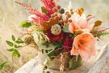 Florals / by Jennifer Counselman