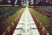 Long Table / by Michelle Murray