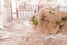 Ivory wedding  / by Cindy O'Malley