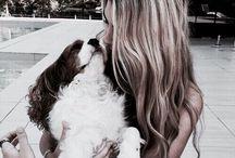 f a u n a ∘ / animals 4 life