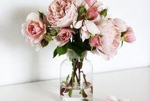 Flowers / Blog https://florifgf.blogspot.ro/?m=1 Instagram  https://www.instagram.com/florifgf/?hl=ro