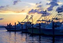 Marinas ~ Caribbean / Marinas ~ The marinas of the Caribbean offers a spectacular vista on the oceanic side of the islands. Sterling commercial marine services mean experienced yachters and big sea fishermen and women can count on the best sports and recreation experiences. Technical Services and Facilities are available at most all of the islands. Set sail!