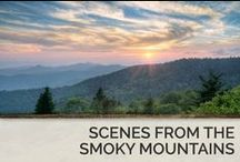 Scenes from the Smoky Mountains / There's over 800 square miles of beautiful wooded forestry, hiking trails and driving routes in the Great Smoky Mountains National Park.  / by Timber Tops Luxury Cabin Rentals