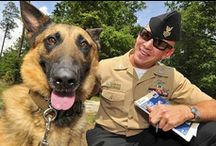 Animals who Serve / Our service animals vary in size, shape, and kind. Their jobs can save lives and help people in more ways than one. Some might surprise you so have a look and like the one that is YOUR favorite! / by U.S. Navy