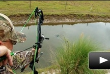 Bowhunting channels