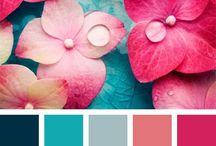 Color Palettes / Colour palettes, colour inspiration, design inspiration