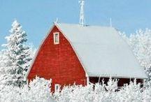 Beautiful Barns / by Carla Androy