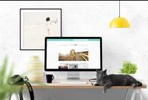 Web Design / Web design for creatives and small businesses