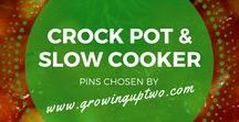 SLOW COOKER RECIPES / SLOW COOKER AND CROCK POT RECIPES. A SELECTION OF PINS CHOSEN BY GROWINGUPTWO.COM - A POPULAR FAMILY TRAVEL BLOG