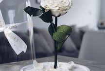 """INTERIOR INSPIRATION - Inneneinrichtung, DIY und Deko, Rose, Blumendeko / Interior Deko mit unserer """"La Belle"""" und """"La Bête"""". Ob im Wohnzimmer, Essbereich, Flur, Schlafzimmer oder im Büro - die Rose für die Ewigkeit ist ein elegantes, luxuriöses Blumen-Design für jedes Interior."""
