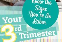 Your Third Trimester / #trimester #pregnancy #third  / by WebMD