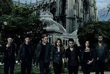 Shadowhunters / Jestem zakochana w tym serialu, najlepsza obsada i scenariusz❤️❤️
