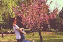 S P R I N G / Springtime. Flowers  Blossom