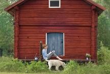 Cabin Love / by Rachel Peters
