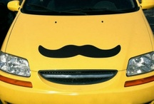 We Mustache you a Question / by Hastings Entertainment
