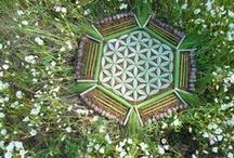 ✧ FLOWER OF LIFE ✧ / The Flower of Life is one of the most sacred of geometric symbols. It is a geometrical shape composed of multiple evenly-spaced, overlapping circles arranged in a flower like pattern with six fold symmetry like a hexagon.