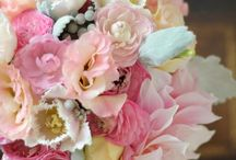 Pastel pink weddings / For those who would like a softer romantic feel.