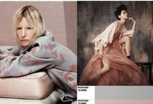 Trend Inspiration - Mood Boards / Trend Inspiration from around the globe