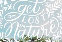 all things lettered / by Tiffany Breinholt