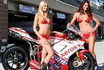 Sports Car/Superbike Racing Events / Sports Cars, Grand Prix, Formula 1, Indy 500, Nascar, LeMans, Dakar, Rally Car Racing, MotoGP Racing & Grid Girls