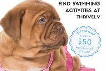 Swim Teams & Swim Season / Resources, ideas and tips for a successful SWIM SEASON!