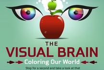 La santé visuelle en infographie / Infographie, schéma... tout savoir d'un seul coup d'oeil sur des sujets d'optométrie, de santé oculaire, de contactologie