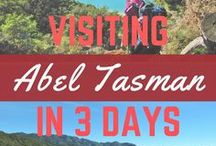Things to Do in Abel Tasmin, New Zealand / All about the beaches, the birds, and the adventure you can have when visiting Abel Tasmin in New Zealand.