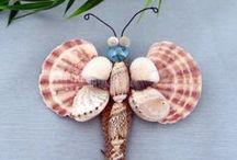 Conchas Mariposas y ángeles