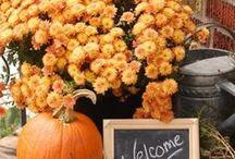 Fall in love / Natuur en landelijke lifestyle in de herfst
