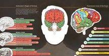 Mind and Attitude