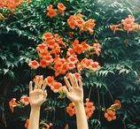 GREENERY / always be in bloom