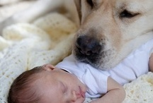 Precious Moments / by Lucy Oropeza