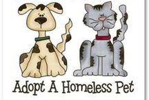 Pets to Adopt!!!! / Save a Life!  These defenseless animals need your help!   / by Nicole Souders