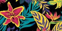 My Designs / graphic pattern, print designs, styles etc.