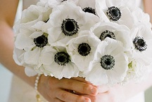 Black & White Weddings / Black and white wedding themes with black and white dresses, styling ideas and decor for weddings and parties.
