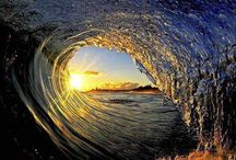 Oceans & ocean life  / by Lorraine LaBruna